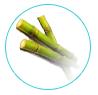 natural skin care ingredients - raw cane sugar
