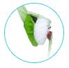 natural skin care ingredients - Guar Gum